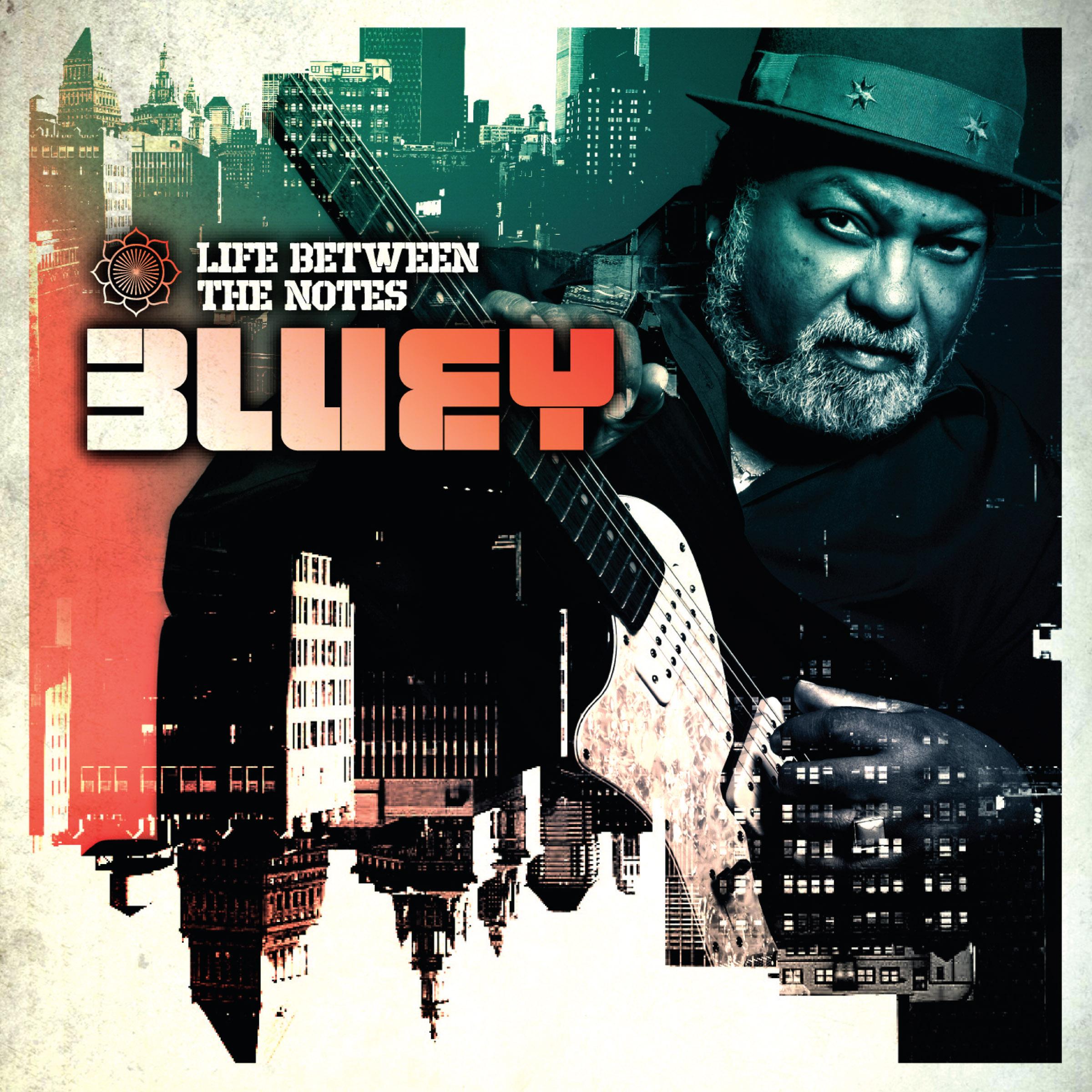 BLUEY-LIFE-BETWEEN-DomeCD331